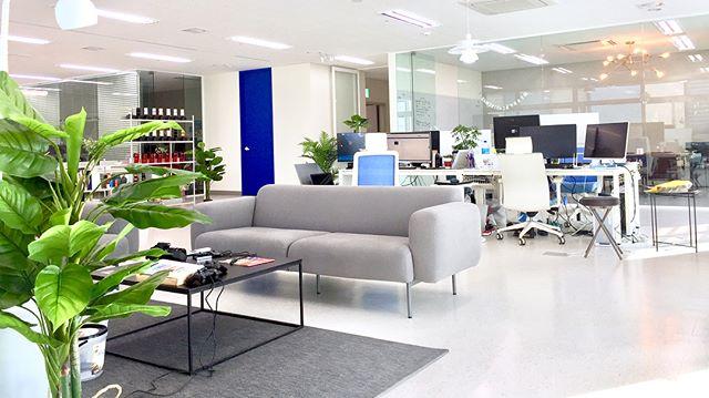. Studio-jt, New office!! . . . . #studiojt #스튜디오제이티 #officeinterior #interior #wordpress #webagency #korea #agency #webawards