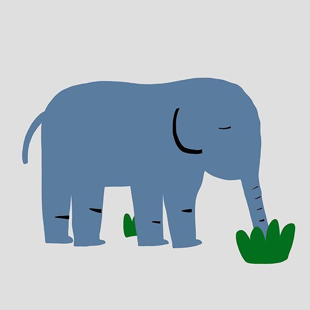 #코끼리 – – – – – – #illustration#illust#design#drowings#drow#drowingart#artwork#artist##art#designer#nature#일러스트#animal#아티스트#드로잉#여름#디자이너#소통#힐링#그림스타그램#jtdesignlife